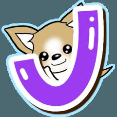 チワワ 犬スタンプ【アルファベット編】