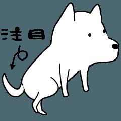 激しく尻尾をふるイヌ2