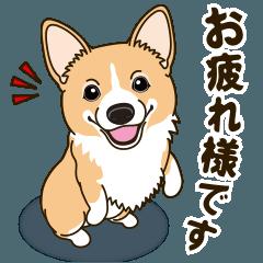 [LINEスタンプ] 気軽にスタンプ コーギー 行動編 (1)