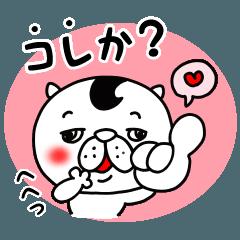 猫野富男2