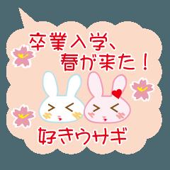 卒業入学、春が来た!好きウサギ