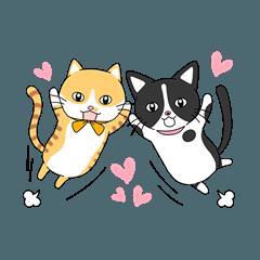 2匹のほっこり猫ちゃん