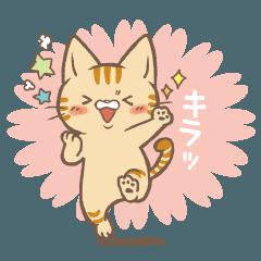 ほんわか猫さん -日本語-