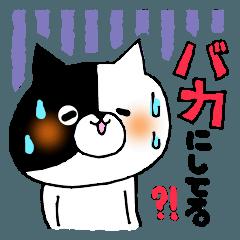 猫便り12 〜バカスペシャル〜