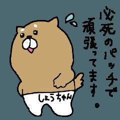 「しょうちゃん」専用ポッポスタンプ②