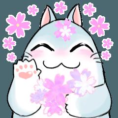 慶n.の丸い白猫