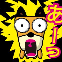 動く!!柴犬さっちゃん6