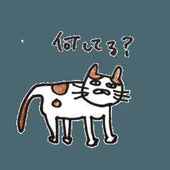 ぶちゃ猫です