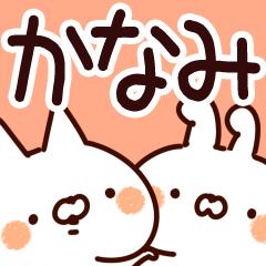 【かなみちゃん専用】