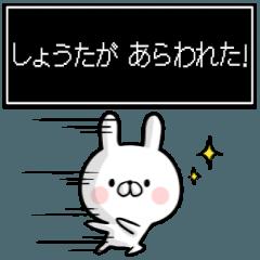 【しょうた】専用名前ウサギ