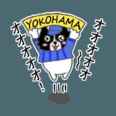 ボボボボボーダーコリー ver大好き横浜野球
