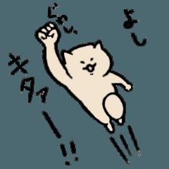 猫のセイロン