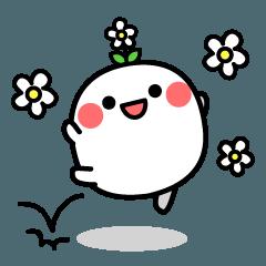 不思議な白い生き物