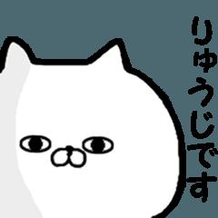 ◆◇ りゅうじ ◇◆ 専用の名前スタンプ
