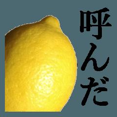 こんな、レモン どうでしょう?