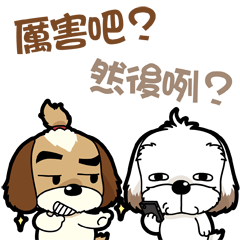 2 シー‧ズー兄弟-あ~相当うけるね!part5