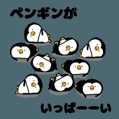 ペンギンがいっぱーーい