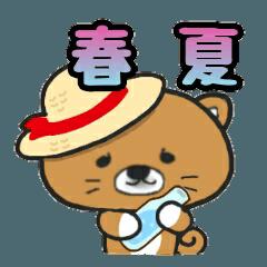 ごまたん。【春夏編】