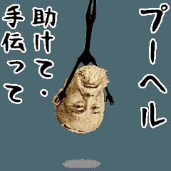 動くよ! お金ちゃん(業界用語)2