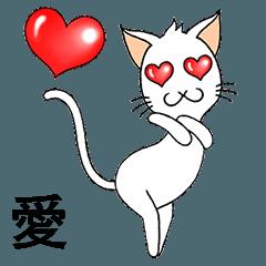 Wayo - 白い目の猫
