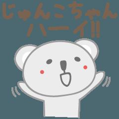 じゅんこちゃんコアラ koala for Junko