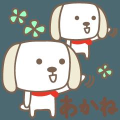 あかねちゃんイヌ dog for Akane