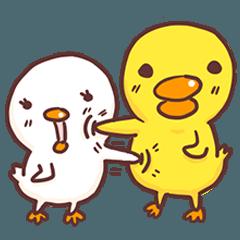Cutie baby duck2 inter version