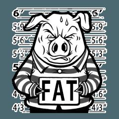 Greedy Pig のいつもの生活