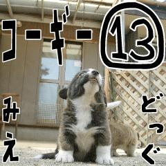 みえどっぐスタンプ コーギーカーディ編 13