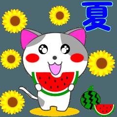 4匹の子猫 第3弾 夏【5~8月】