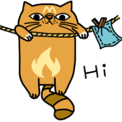 angrycat's daily