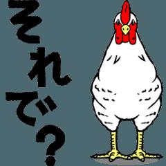 動く鶏、とり、ニワトリ。改