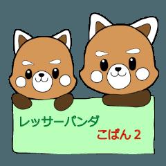 レッサーパンダ こぱん 2