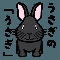 ウサギの「うさぎ」