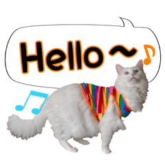 ふわふわ白猫もち兄さんと愉快な弟たち・3