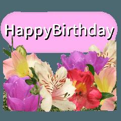 誕生日に花を♪Part 2