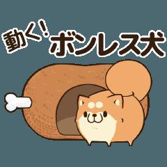 ボンレス犬 む~ぶ