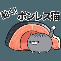 ボンレス猫 む~ぶ