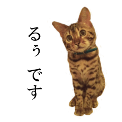 るぅの関西弁スタンプ