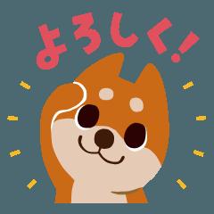 BARON BUDDIES 04 柴犬