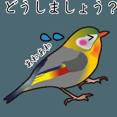 丁寧な言葉づかいの鳥スタンプ