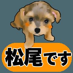 松尾さん用の名前スタンプ・子犬イラスト