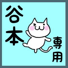 ◆谷本◆専用 白猫さんの名前スタンプ