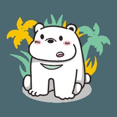 Bear TANG