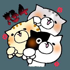 猫便り13 〜怒ってる人が使うスタンプ4〜