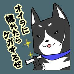 【漢】黒犬の兄貴(アニキ) その壱
