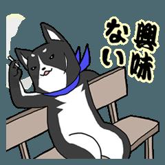 【漢】黒犬の兄貴(アニキ) その弐