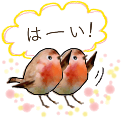 使える 小鳥の日常会話