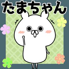 玉/たま/タマちゃん専用なまえ名前スタンプ