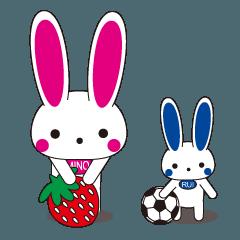 うさぎ母子のかわいい日常(MINOとRUI)